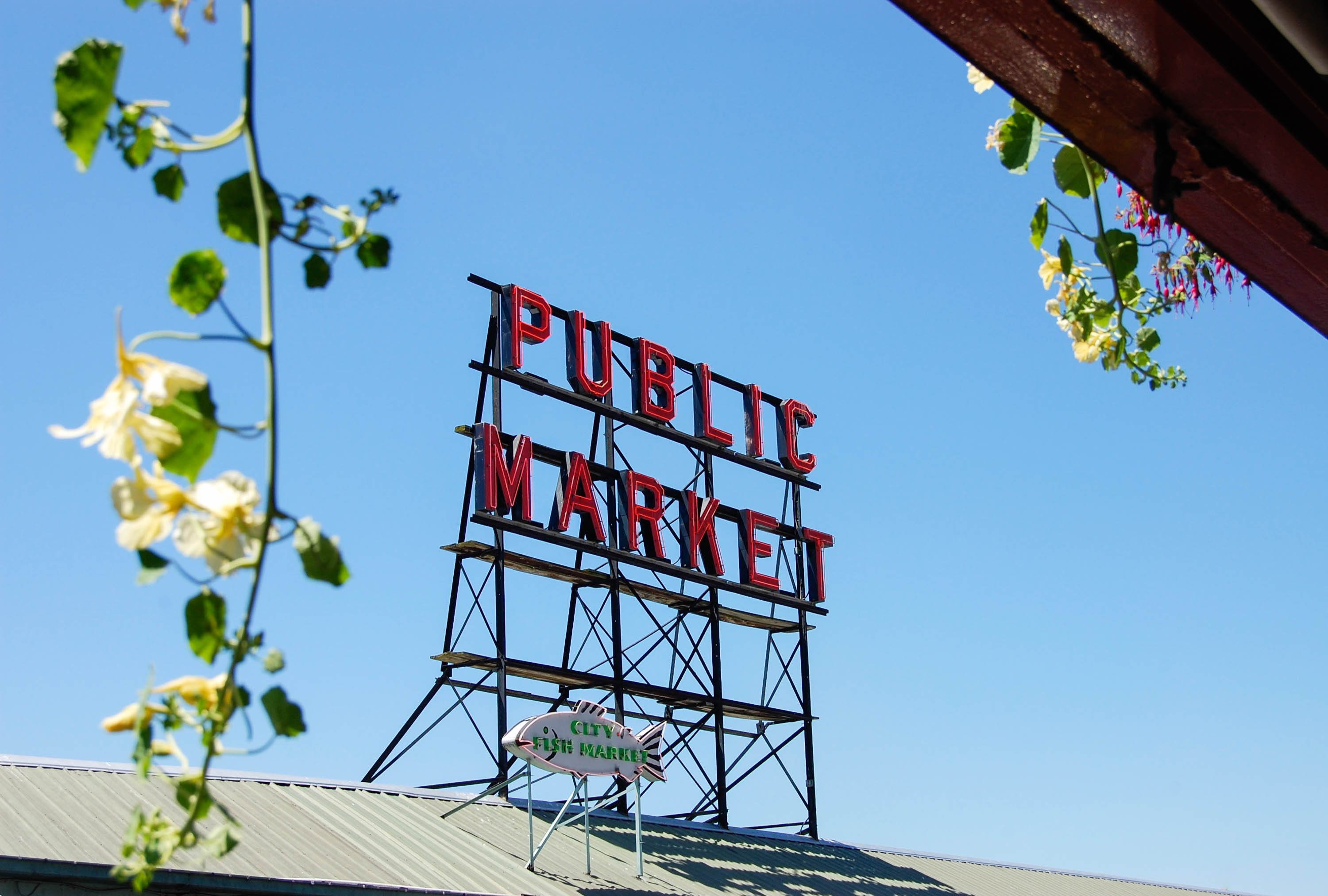Seattle Travel Guide by The District Table